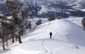 Bill skins uphill near Lamar Valley