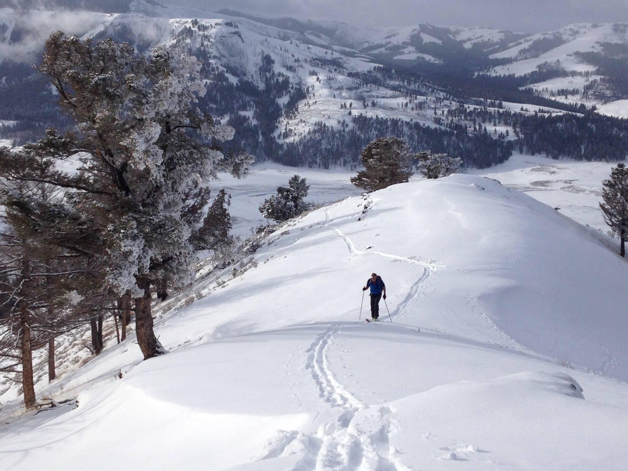 Bill skins uphill near Lamar Valley
